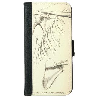 Vintage Anatomy | Scapula (circa 1852) iPhone 6 Wallet Case