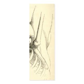 Vintage Anatomy | Shoulder Joint (circa 1852) Mini Business Card
