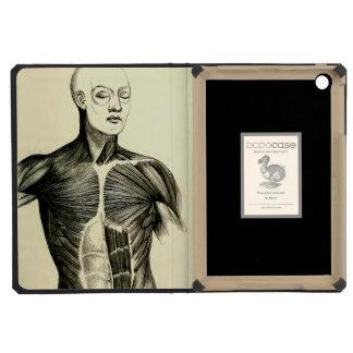 Vintage Anatomy   Torso  (circa 1852) iPad Mini Cases