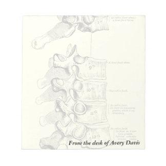 Vintage Anatomy | Vertebrae Notepad