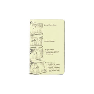 Vintage Anatomy | Vertebrae Pocket Moleskine Notebook
