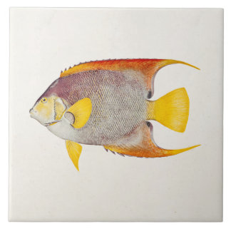 Vintage Angel Fish Antique Hawaiian Print Template Ceramic Tile