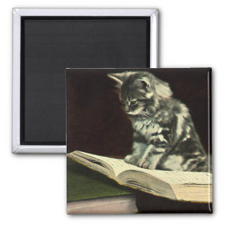 Vintage Animal, Cute Victorian Kitten Reading Book Magnet