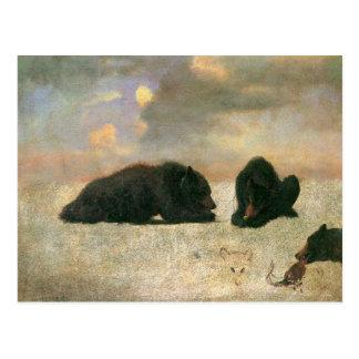 Vintage Animals, Grizzly Bears by Albert Bierstadt Postcard