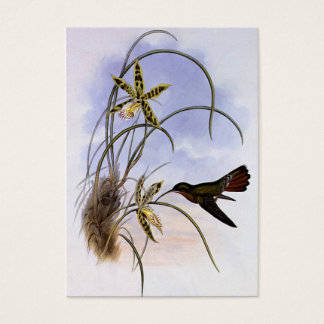 Vintage Animals, Hummingbird Bird Orchid Flowers Business Card