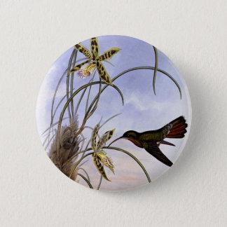 Vintage Animals, Hummingbird Bird Orchid Flowers Button