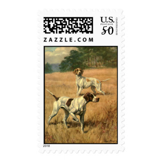 Vintage Animals, Pointer Dogs Hunting in a Field Postage