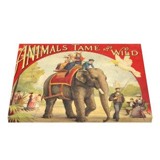 Vintage Animals Tame & Wild Canvas