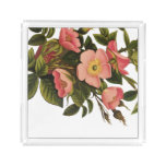 Vintage Antique Art Rose Flower Art Illustration Acrylic Tray