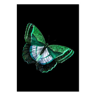 Vintage Antique Green Butterfly 1800s Illustration Large Business Cards (Pack Of 100)