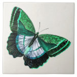 """Vintage Antique Green Butterfly 1800s Illustration Tile<br><div class=""""desc"""">Custom Template For Large Ceramic Tiles - Customized Tile Templates. Personalize with your own name, pattern, design, quote, monogram, or photograph. Use our cool templates, artwork, photos, graphics, and illustrations, then add names, text, quotes, and monograms to create your own ceramic tile. Click the &quot;Customize it!&quot; button to make it...</div>"""