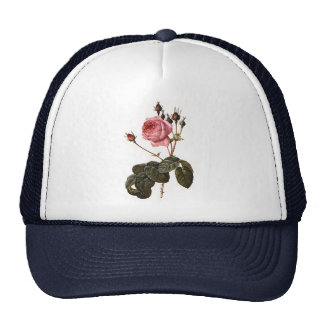 Vintage Antique Pink Garden Roses in Bloom Trucker Hat