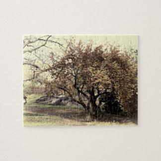 Vintage Antiqued Landscape Photo of Central Park Puzzles