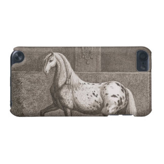 Vintage Appaloose Horse iPod Touch 5G Cover