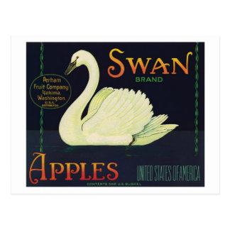 Vintage Apples Food Product Label Postcard