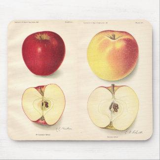 Vintage Apples Mousepad