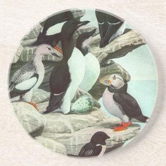 Vintage Aquatic Birds Puffins, Marine Life Animals Sandstone Coaster