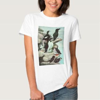 Vintage Aquatic Birds Puffins, Marine Life Animals T-Shirt