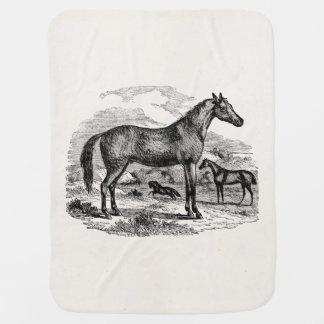Vintage Arabian Horse Personalized Illustration Stroller Blanket