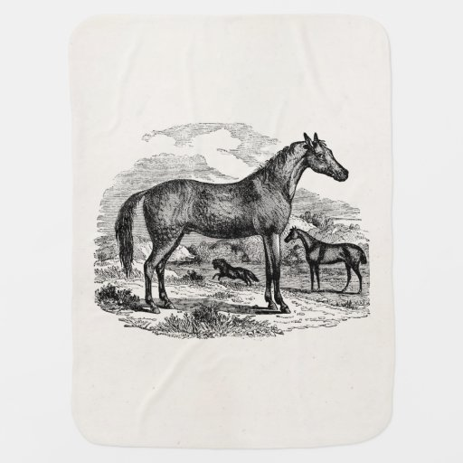 Vintage Arabian Horse Personalized Illustration Baby Blankets