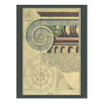 Vintage Architecture; Capital Volute by Vignola Post Card