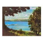 Vintage  ,Argentina, Lake Nabuel Huapi Post Cards