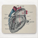 Vintage Art Anatomical Heart Diagram - science Mouse Pad
