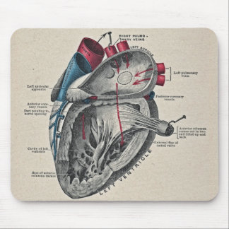 Vintage Art Anatomical Heart Diagram - science Mouse Pad