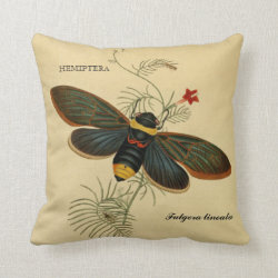 >Vintage Art: Asian Moth Fulgora lineata Throw Pillow