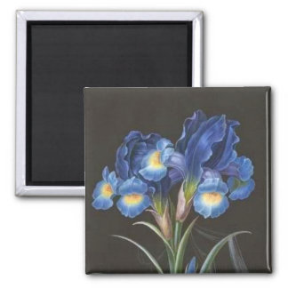 Vintage Art Collection 2 Inch Square Magnet