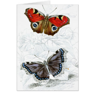 Vintage Art Collection Card