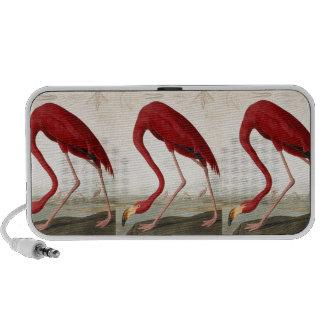 Vintage Art Flamingo Illustration Mp3 Speakers