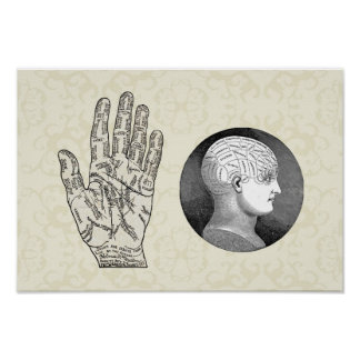 Vintage Art Palmistry and Phrenology diagrams Poster