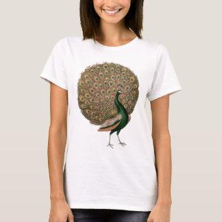 Vintage art Peafowl (peacock) plummage green gold T-Shirt