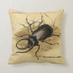Vintage Art: Scarabaeus Atlas Beetle 1800 Throw Pillow