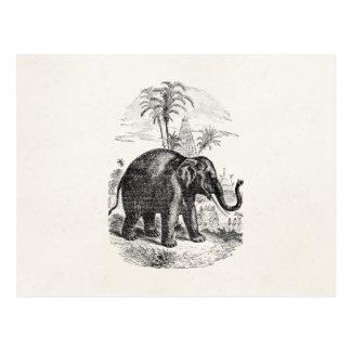 Vintage Asian Elephant Personalized Elephants Postcard