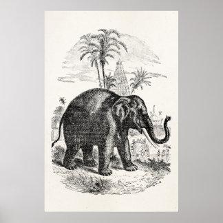 Vintage Asian Elephant Personalized Elephants Poster