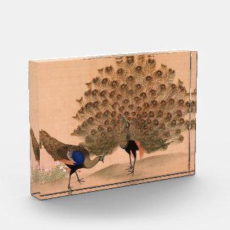 Vintage Asian Peacock Acrylic Award