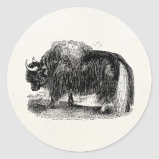 Vintage Asian Yak Retro Yaks Animal Illustration Classic Round Sticker