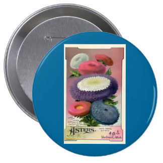 Vintage Assorted Asters Seeds Pinback Buttons