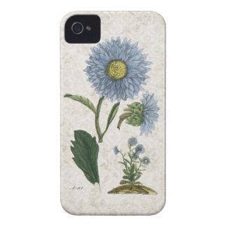 Vintage Aster flower on grunge damask background iPhone 4 Covers