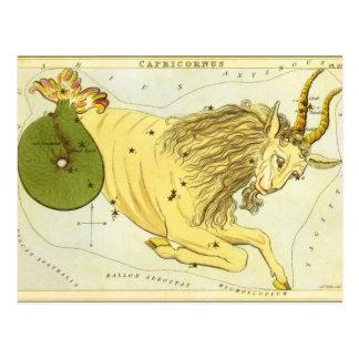 Vintage Astrology Capricorn Constellation Zodiac Postcard