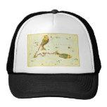 Vintage Astrology Pisces Fish Constellation Zodiac Hat