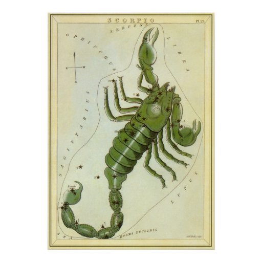 Vintage Astrology Scorpio Constellation Zodiac Posters