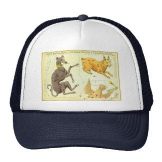 Vintage Astronomy, Celestial Map Star Chart in Sky Trucker Hat