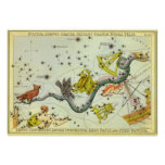 Vintage Astronomy, Hydra Snake Constellation Stars Poster