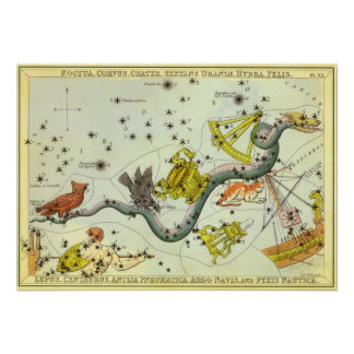 Vintage Astronomy, Hydra Snake Constellation Stars Poster