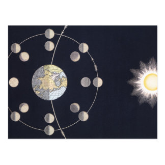 Vintage Astronomy, Phases of the Moon with Sun Postcard