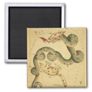 Vintage astronomy print Draco & Ursa Minor Magnet