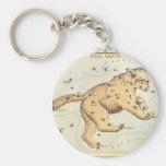 Vintage Astronomy, Ursa Major Constellation, Bear Basic Round Button Keychain